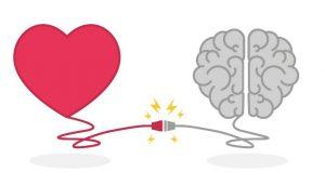 heart + brain
